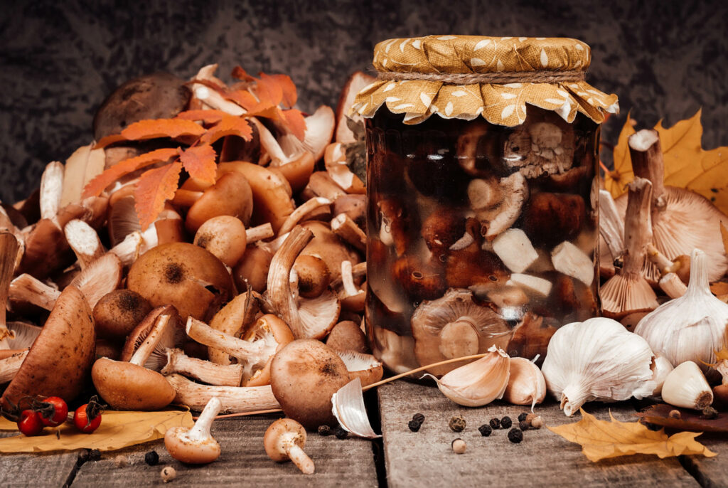Стерилизация грибов