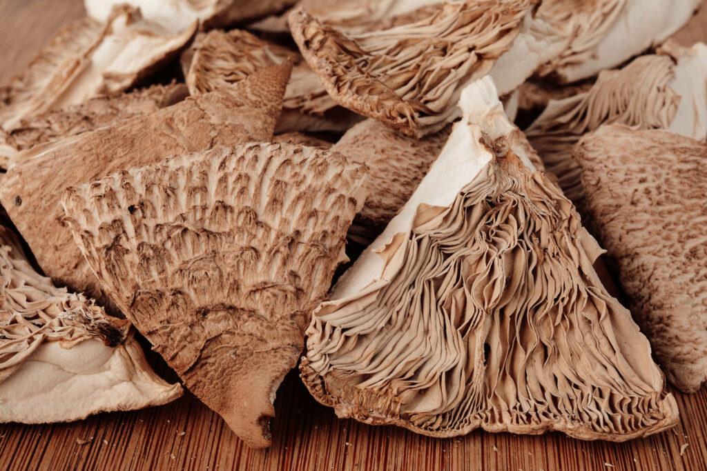 Сушённые грибы
