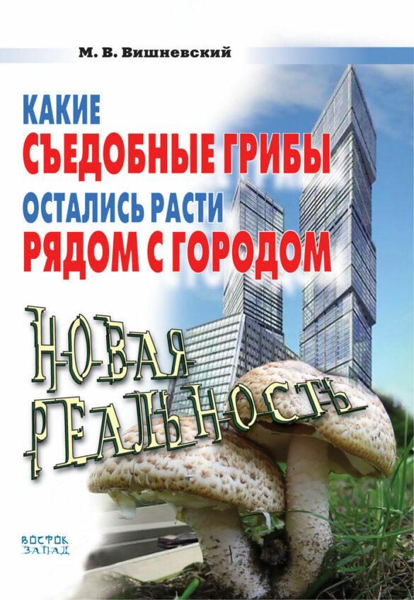 Какие съедобные грибы остались расти рядом с городом: новая реальность
