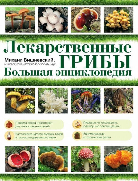 Лекарственные грибы: большая энциклопедия