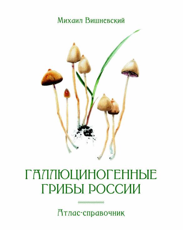 Галлюциногенные грибы россии