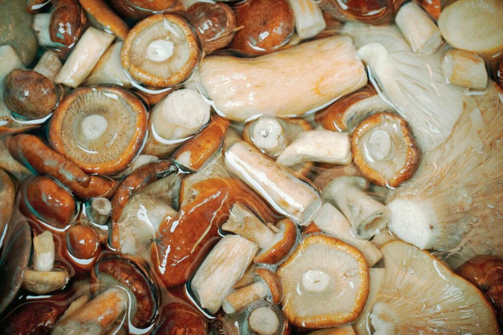 Засолка грибов вымачивание
