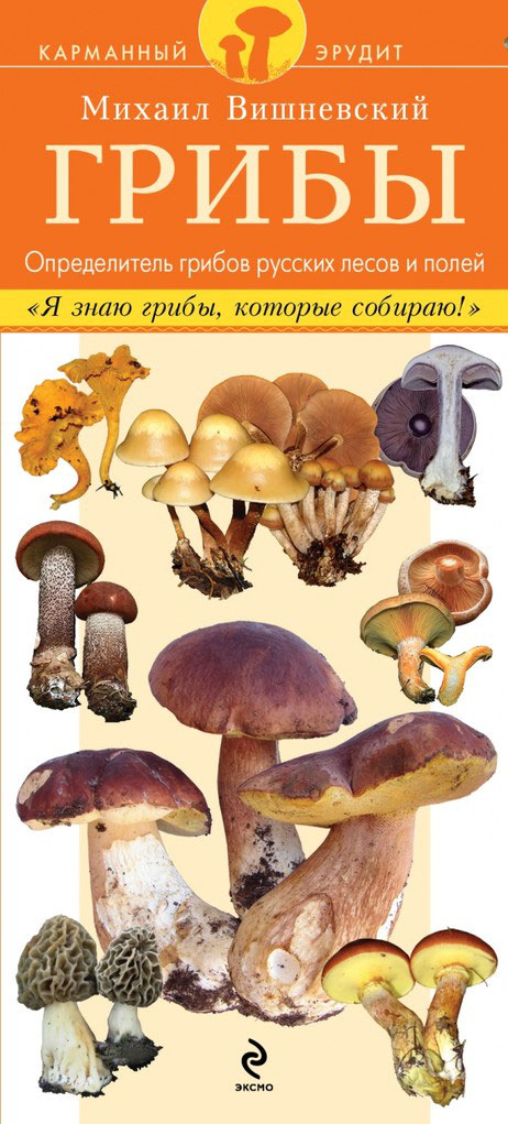 Определитель грибов русских лесов и полей
