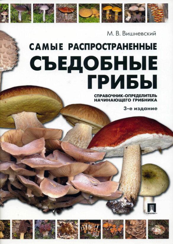 Самые распространенные съедобные грибы 3